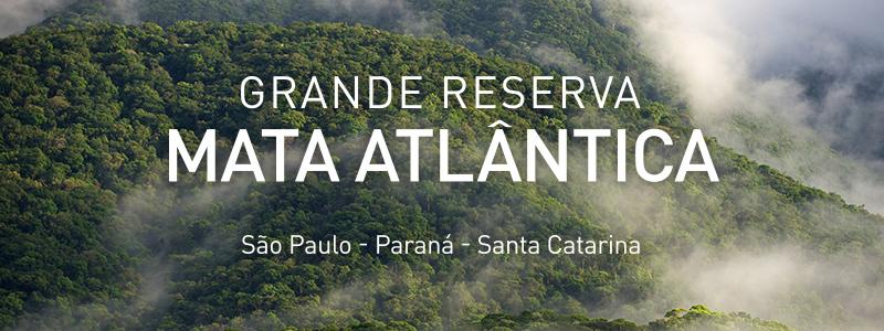 Grande Reserva Mata Atlântica